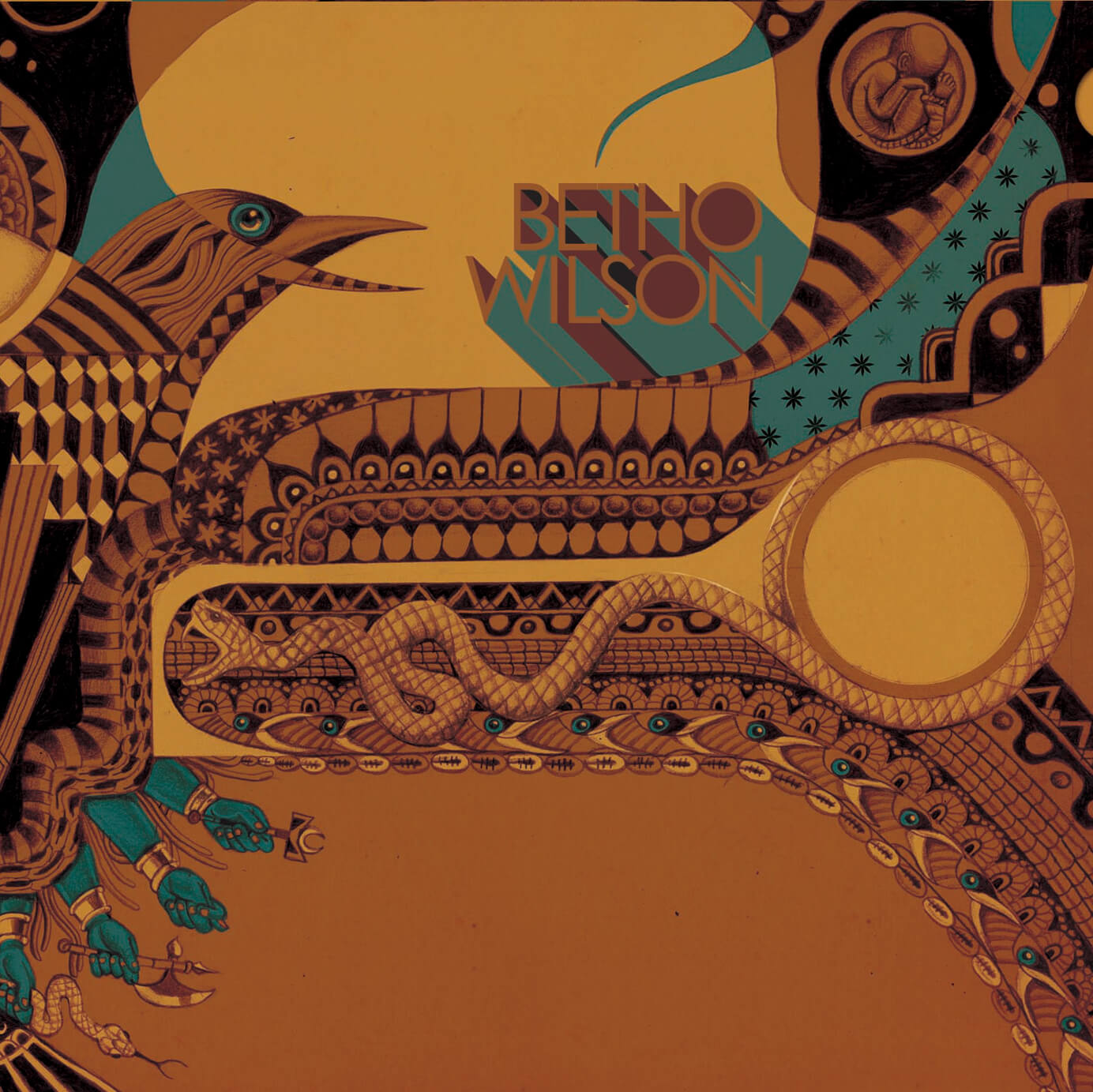 CAPA - CD - BETHO WILSON PASSARO PRETO (1) (1)